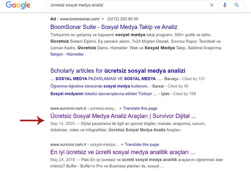 Google organik arama
